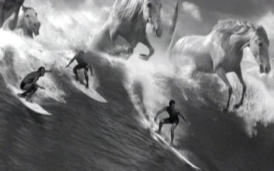 Guinness surfer advert with giant wave and horses - best ever Guinness adverts | SEIKK Magazine